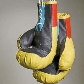 COVID lockdown business ideas: you may need your boxing gloves!